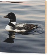 Duck On The Lake Wood Print