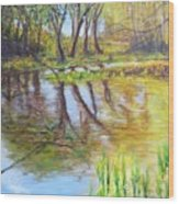 Duck Pond I Wood Print