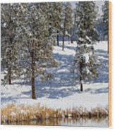 Duck Pond In Colorado Snow Wood Print
