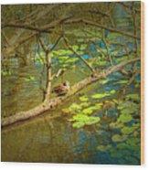 Duck Tales.  Wood Print