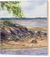 Duck Trap River Outlet Wood Print
