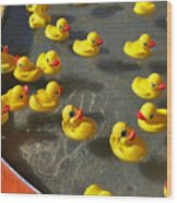Duckies Wood Print