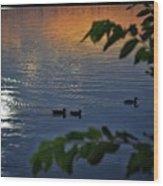 Ducks At Daybreak  Wood Print