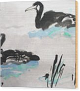 Ducks In The Willows Wood Print
