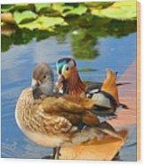 Ducks Wood Print