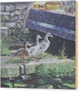 Ducks On Dockside Wood Print