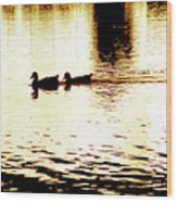 Ducks On Pond 1 Wood Print