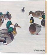 Ducks On The Snow Wood Print