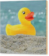 Ducky's Fun Day  At The Beach Wood Print