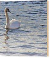 Duddingston Swan 1 Wood Print