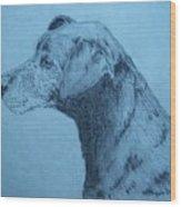Dudley Wood Print