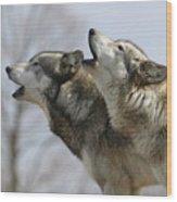 Duet Howl Wood Print