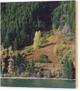 Duffey Lake Colors Wood Print