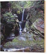 Duggers Creek Falls Wood Print