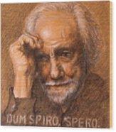 Dum Spiro Spero Wood Print