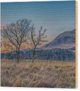 Dumgoyne Wood Print