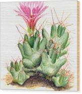Dumpling Cactus Wood Print
