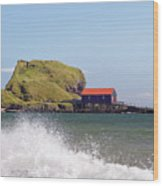 Dunaverty Shore Wood Print