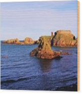 Dunbar Coast Wood Print