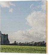 Dunbrody Abbey Wood Print