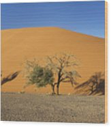Dune 45 And Trees Wood Print