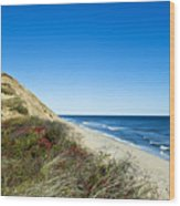 Dune Cliffs And Beach Wood Print