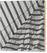 Dune Fence Wood Print
