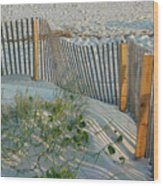 Dune Fence Wood Print by Suzanne Gaff