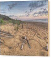 Dune Fencing Down Wood Print