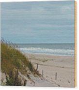 Dune Grass 2 Wood Print