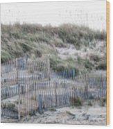 Dune Walk Wood Print