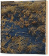 Dunes And Beach House Wood Print