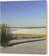 Dunes And Yucca One Wood Print