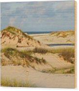 Dunes At Gulf Shore Wood Print