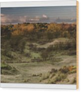 Dunes At Sunrise Wood Print