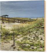 Dunes At Tybee Island Wood Print