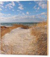 Dunes In Winter Wood Print