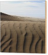 Dunes Of Alaska Wood Print