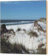 Dunes On St. Joseph Wood Print