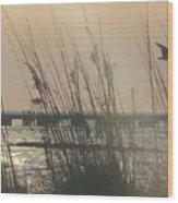 Dunes On The Bay Wood Print
