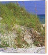 Dunes Trail The Emerald Coast Wood Print