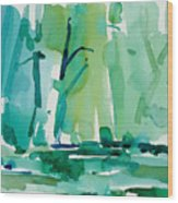 Dunfield-creek-_37-11x14 Wood Print