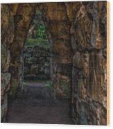 Dungeon Walls Wood Print