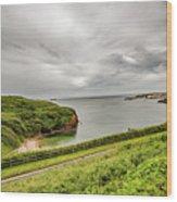 Dunmore East Cliffs Wood Print