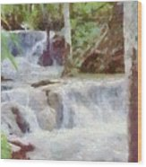 Dunn River Falls Wood Print