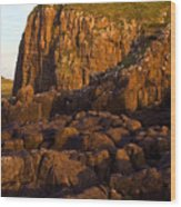 Duntulm Castle Isle Of Skye Wood Print