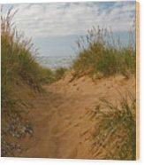 Nova Scotia's Cabot Trail Dunvegan Beach Dunes Wood Print