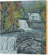 Dupont State Forest Triple Falls Wood Print