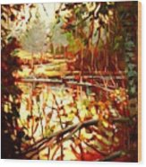 Durance Lake Wood Print