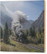 Durango And Silverton Train At Elk Park Wye Wood Print